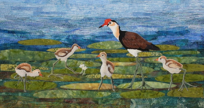 Jacana and chicks small file